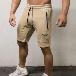 Pánské fitness kraťasy Andres - kolekce 2020