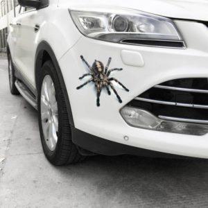 Zvířecí 3D samolepka na auto